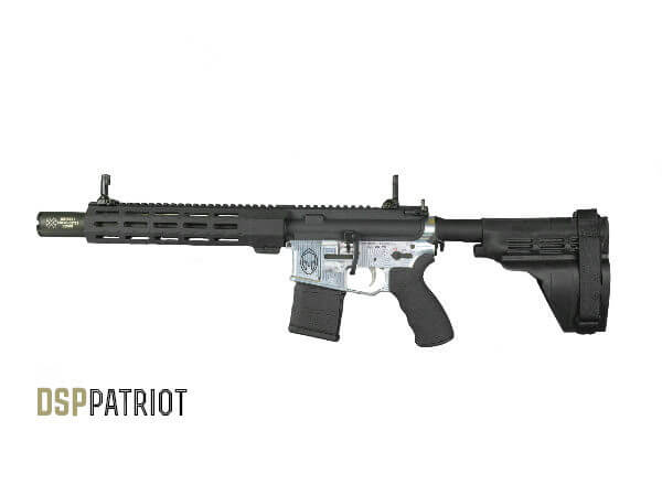 AR-15 Patriot